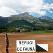 Can Pontico, de camp de tir a refugi de fauna