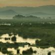 20 anys del Parc Natural de s'Albufera